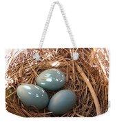 Robin Eggs Weekender Tote Bag