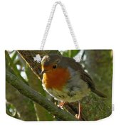 Robin In A Tree Weekender Tote Bag