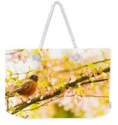 Robin In Spring Blossom Cherry Tree Weekender Tote Bag