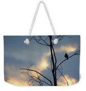 Robin Watching Sunset After The Storm Weekender Tote Bag
