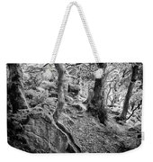 Rock And Trees Weekender Tote Bag