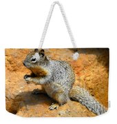 Rock Squirrel Weekender Tote Bag