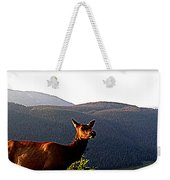 Rocky Mountain Elk Vi Weekender Tote Bag
