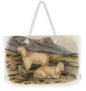 Rocky Mountain Goats Weekender Tote Bag