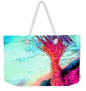 Rocky Outcrop Outline Of Quiver Tree Weekender Tote Bag