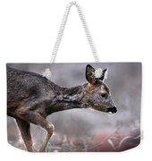 Roe Deer Weekender Tote Bag