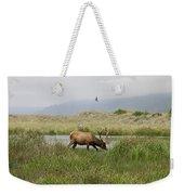 Roosevelt Elk 1 Weekender Tote Bag