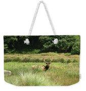 Roosevelt Elk 2 Weekender Tote Bag