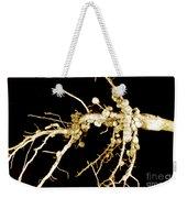 Root Nodules On Soya Plant Weekender Tote Bag