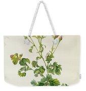 Rosa Centifolia Bipinnata Weekender Tote Bag
