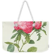 Rosa Centifolia Prolifera Foliacea Weekender Tote Bag by Pierre Joseph Redoute