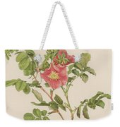Rosa Cinnamomea The Cinnamon Rose Weekender Tote Bag