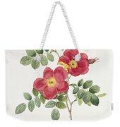 Rosa Eglantera Punicea Weekender Tote Bag