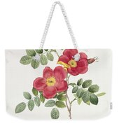 Rosa Eglantera Punicea Weekender Tote Bag by Pierre Joseph Redoute