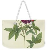 Rosa Gallica Purpurea Velutina Weekender Tote Bag