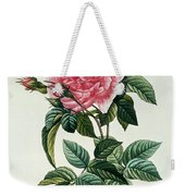 Rosa Gallica Regalis Weekender Tote Bag