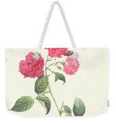 Rosa Indica Caryophyllea Weekender Tote Bag