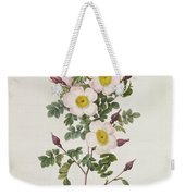 Rosa Pimpinelli Folia Inermis Weekender Tote Bag by Pierre Joseph Redoute