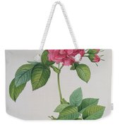 Rosa Turbinata Weekender Tote Bag by Pierre Joseph Redoute