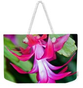 Rose-colored Christmas Cactus At Pilgrim Place In Claremont-california  Weekender Tote Bag