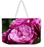 Rose Pink Purple Roses Flowers 1 Rose Garden Sunlit Flowers Baslee Troutman Weekender Tote Bag