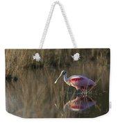 Roseate Spoonbill In Morning Light Weekender Tote Bag