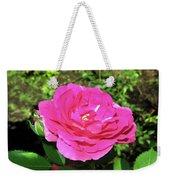 Roses 10 Weekender Tote Bag