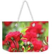 Roses Garden Spring Scene Weekender Tote Bag