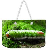Rosy Maple Moth Caterpillar Weekender Tote Bag