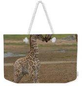 Rothschild Giraffe Giraffa Weekender Tote Bag
