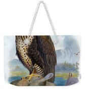 Rough Legged Buzzard Hawk Antique Bird Print The Birds Of Great Britain Weekender Tote Bag