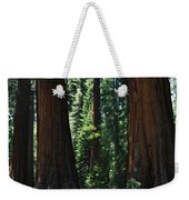 Round Meadow Sequoia Family Portrait Weekender Tote Bag