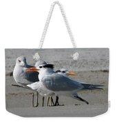 Royal Terns And Gulls Weekender Tote Bag