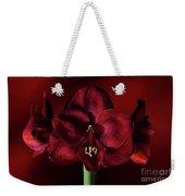 Ruby Red Amaryllis Weekender Tote Bag