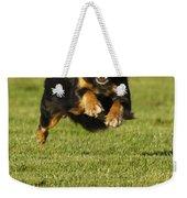 Run Dog Run Weekender Tote Bag