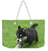 Running Alusky Puppy Dog Stretching Out His Stride Weekender Tote Bag