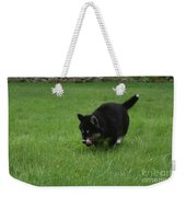 Running Alusky Puppy Licking His Nose With A Pink Tongue Weekender Tote Bag