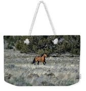 Running Bachelor Stallion Weekender Tote Bag