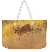 Running In Sunlight Weekender Tote Bag by John De Bord
