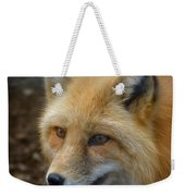 Russian Red Fox Weekender Tote Bag