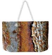 Rust And Ladybug Weekender Tote Bag
