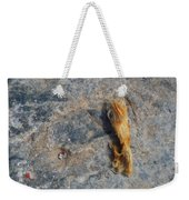 Rust In The Dust Weekender Tote Bag