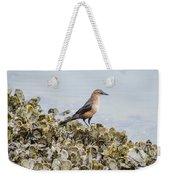 Rusty Blackbird #6 Weekender Tote Bag