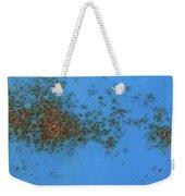 Rusty Islands Weekender Tote Bag