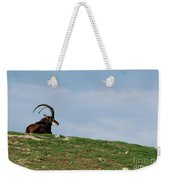 Sable Antelope On Hill Weekender Tote Bag