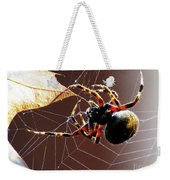 Sac Spider Catches A Leaf Weekender Tote Bag