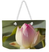 Sacred Lotus - Nelumbo Weekender Tote Bag