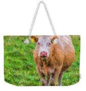 Sad Cow - Painterly Weekender Tote Bag