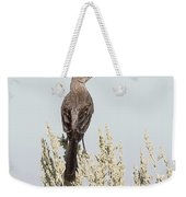 Sage Thrasher On Perch Weekender Tote Bag