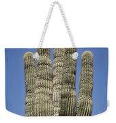 Saguaro 2 Weekender Tote Bag